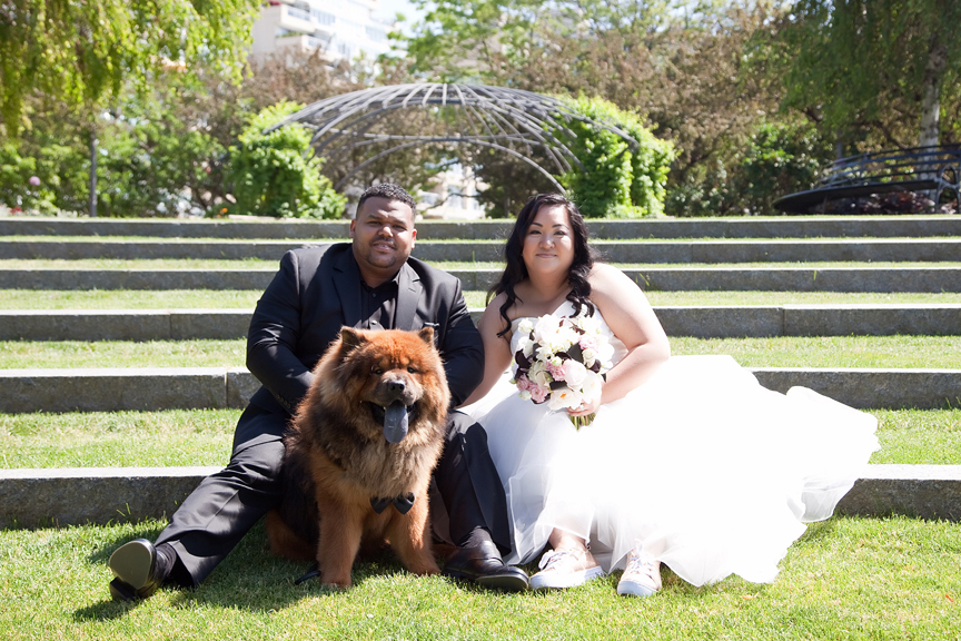 bride and groom with dog wedding portrait at Toronto Music Gardens