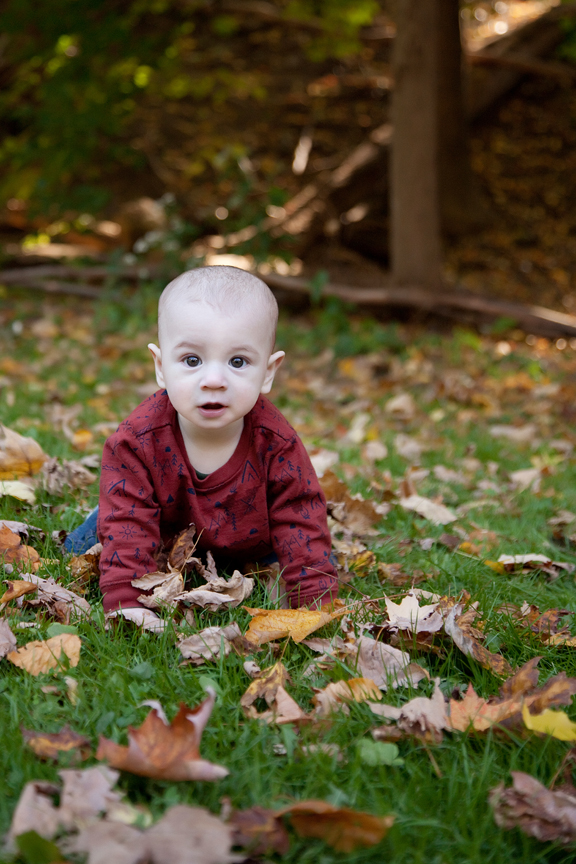 family photography session autumn cute baby